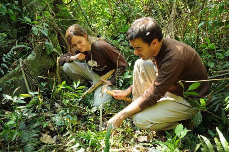 Una buena idea: La revolución del Banco de Bosques