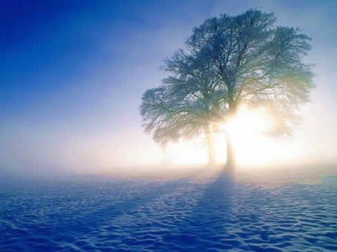 La Espiritualidad: un viaje al centro del hombre